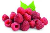 Raspberry & Vanilla Panna Cotta 2